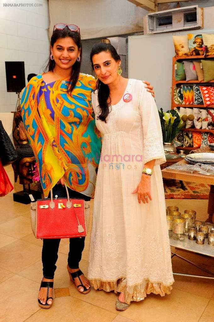 Pinky Reddy & Mana Shetty at Araish in Mumbai on 8th Oct 2013
