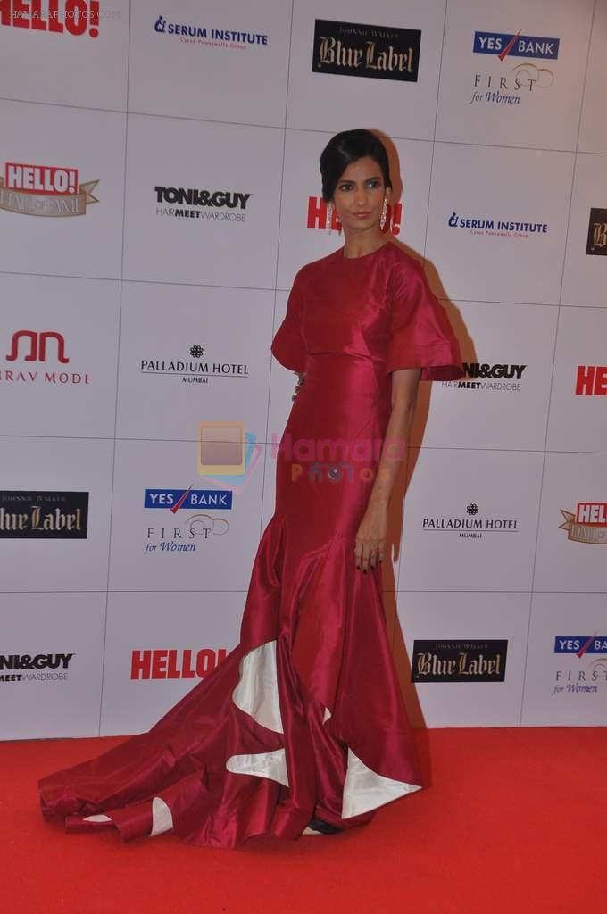 Poorna Jagannathan at Hello hall of  fame awards 2013 in Palladium Hotel, Mumbai on 24th Nov 2013