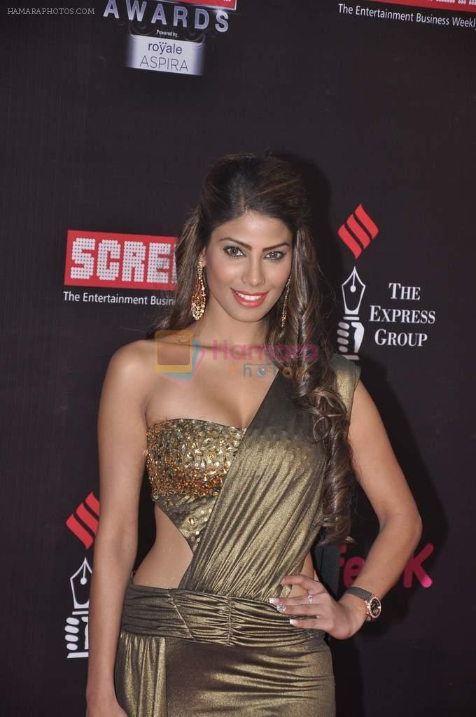 Nicole Faria at 20th Annual Life OK Screen Awards in Mumbai on 14th Jan 2014