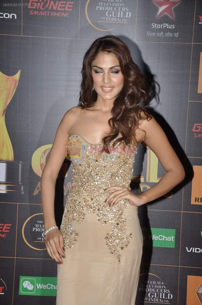 Nicole Faria at The Renault Star Guild Awards Ceremony in NSCI, Mumbai on 16th Jan 2014