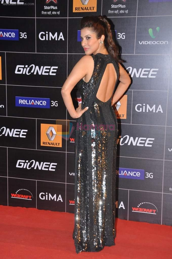 Sophie Chaudhary at 4th Gionne Star Global Indian Music Academy Awards in NSCI, Mumbai on 20th Jan 2014