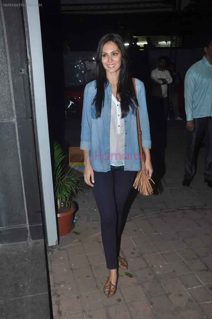 Bruna Abdullah at Jai Ho screening and party in Mumbai on 23rd jan 2014