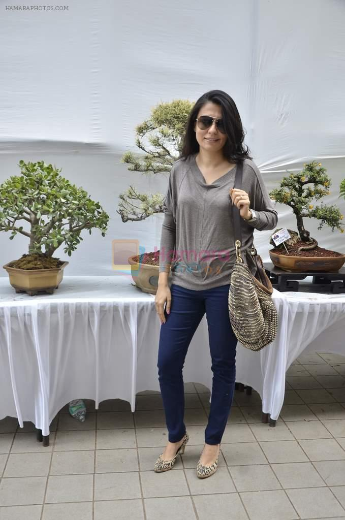 Mini Mathur at Jamnabai's Bonzai exhibition in Juhu, Mumbai on 21st Feb 2014