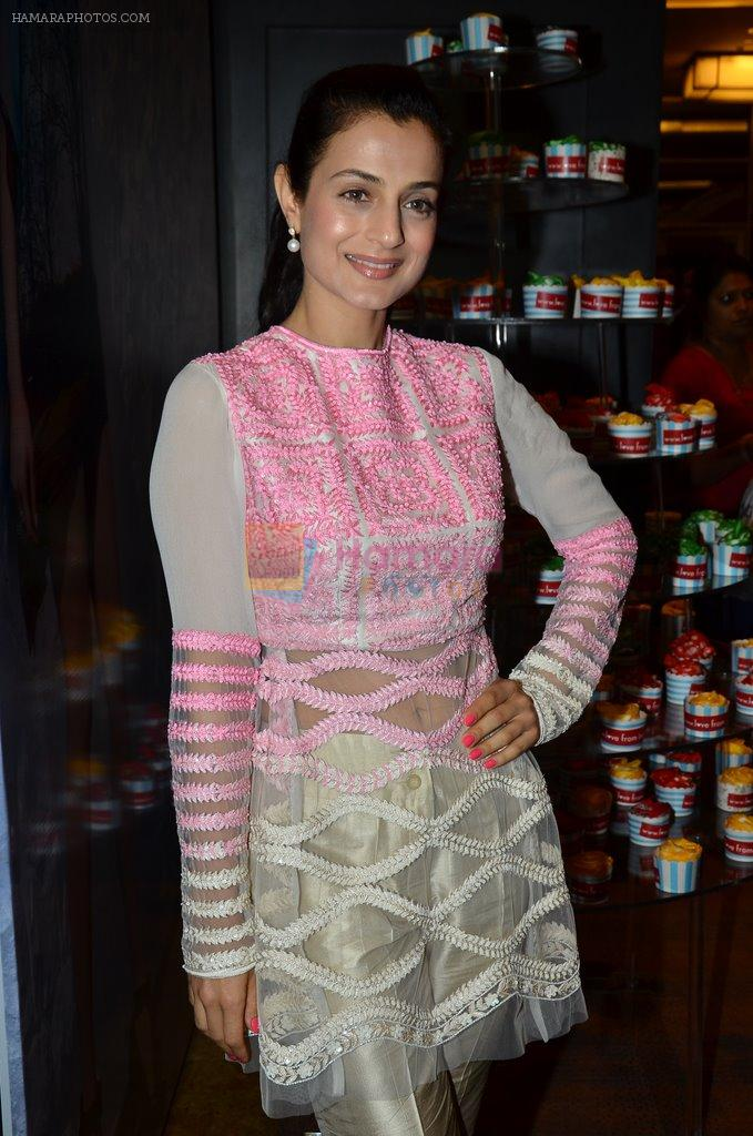 Ameesha Patel at Manish Malhotra Show at LFW 2014 opening in Grand Hyatt, Mumbai on 11th March 2014