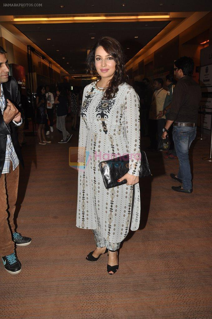 Tisca Chopra on Day 2 at LFW 2014 in Grand Hyatt, Mumbai on 13th March 2014