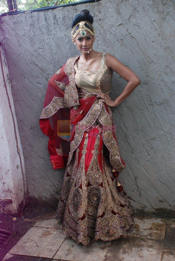 Carol Gracias at Rohit Verma's his newest collection Vrindavan on 14th Aug 2014