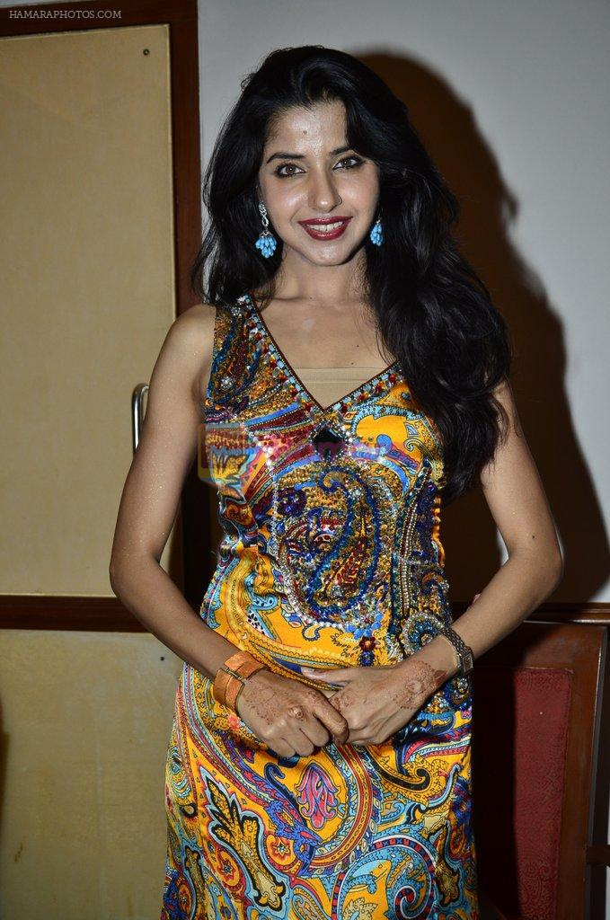at Love In Cairo film launch in Raheja on 16th Aug 2014