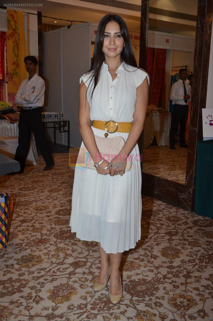 Kim Sharma at Helping Hands exhibition in Palladium on 29th Sept 2014