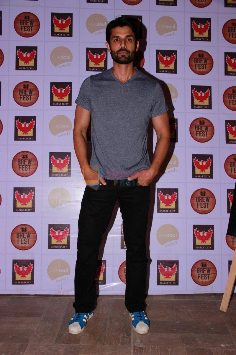 Ameet Gaur at the Brew Fest in Mumbai on 23rd Jan 2015