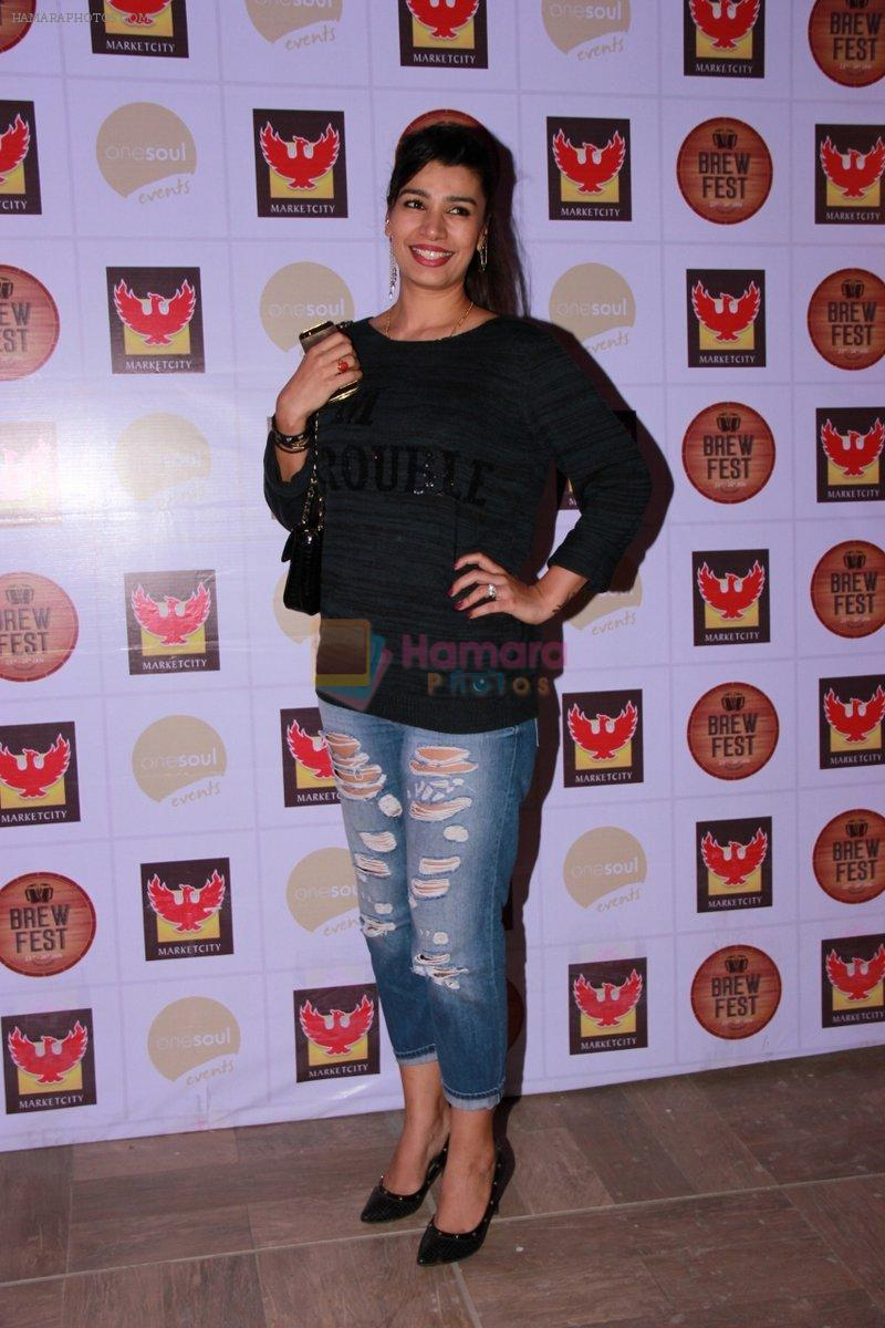Mink Brar at the Brew Fest in Mumbai on 23rd Jan 2015