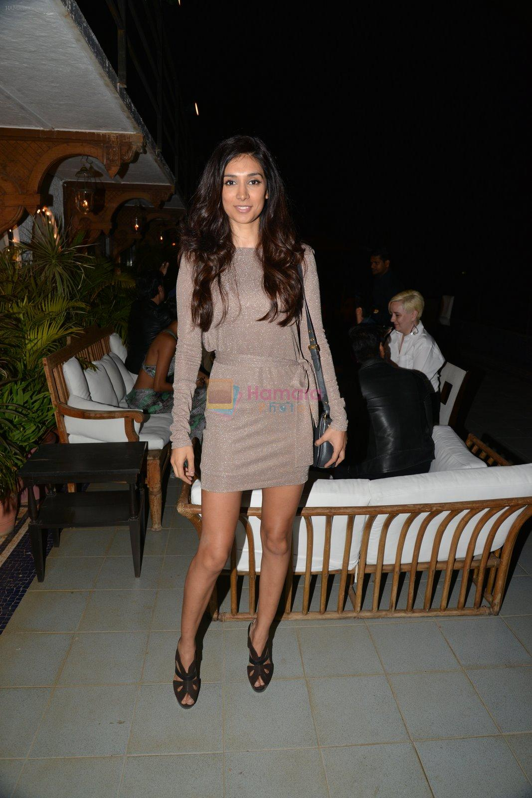 Preeti Desai at Belvedare bash in Mumbai on 23rd Jan 2015