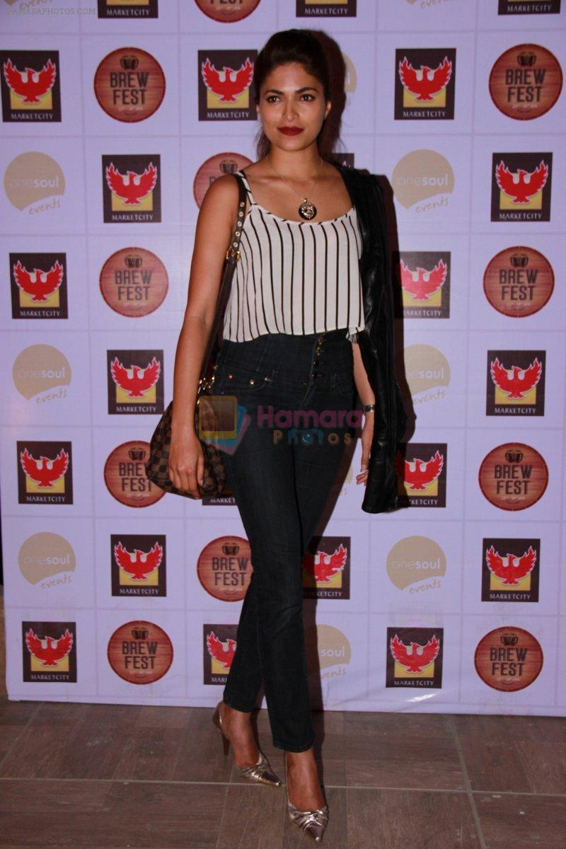 Parvathy Omanakuttan at the Brew Fest in Mumbai on 23rd Jan 2015
