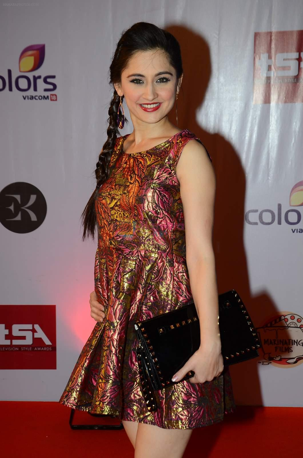 Sanjeeda Sheikh at Television Style Awards in Filmcity on 13th March 2015