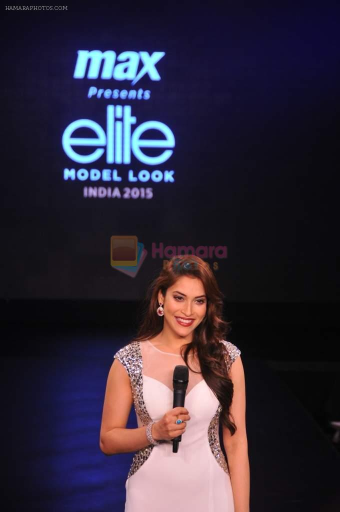 Rashmi Nigam at Max Elite grand finale on 25th Sept 2015