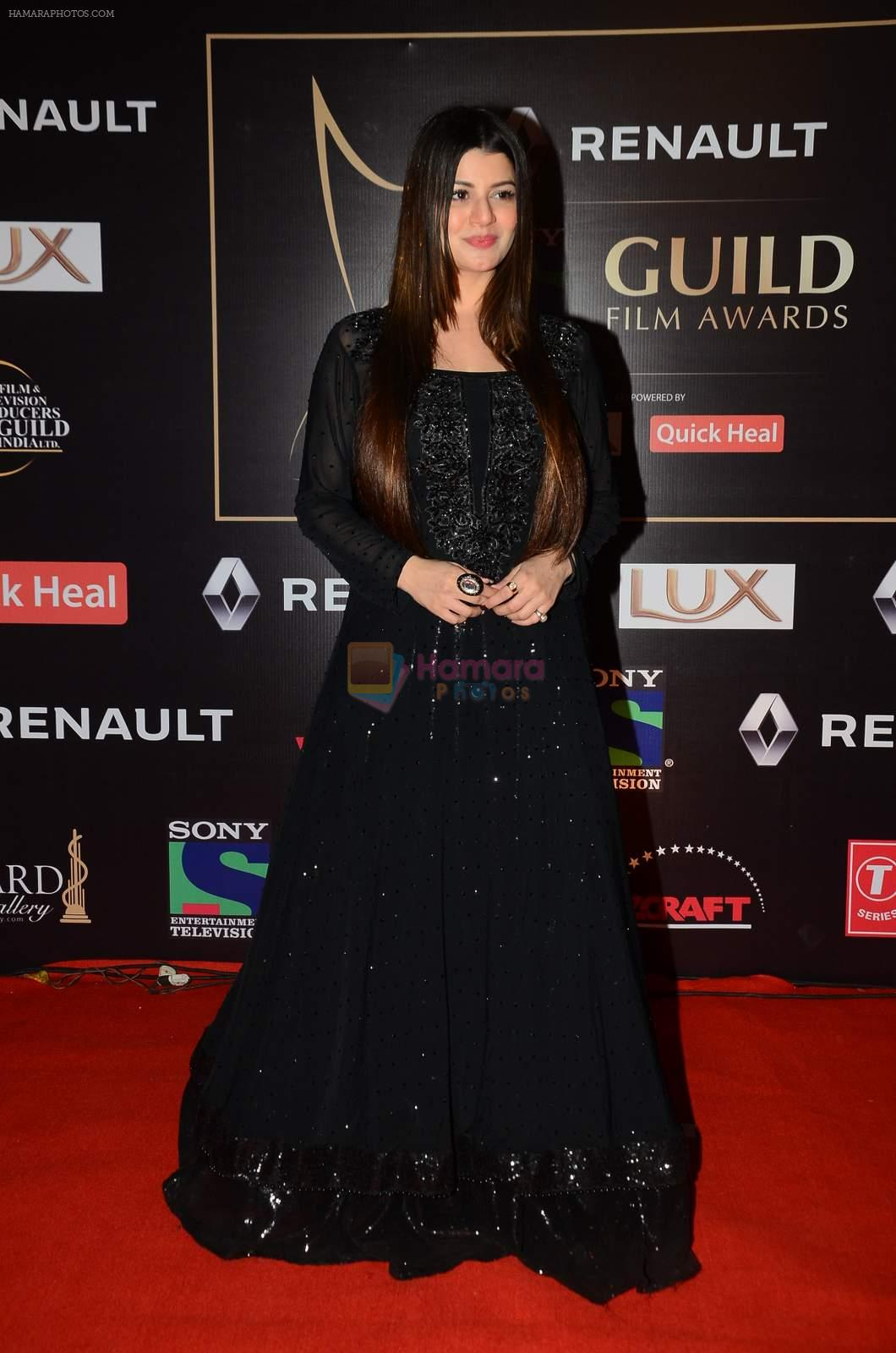 Kainaat Arora at Producer's Guild Awards on 22nd Dec 2015