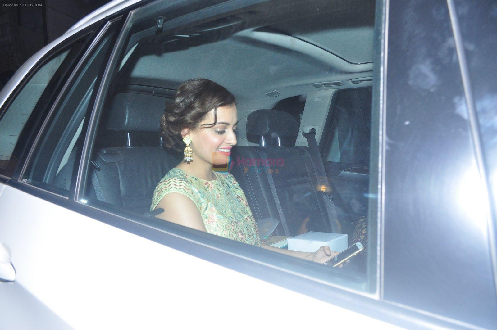Dia Mirza at Dr Aggarwal's daughter's wedding in Mumbai on 27th Feb 2016