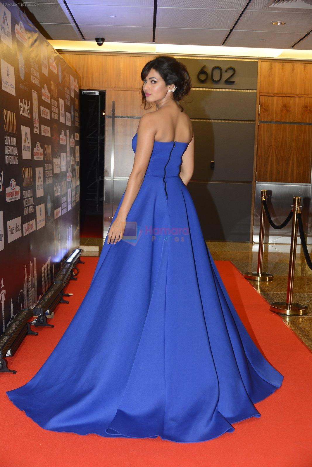 Sonal Chauhan at SIIMA 2016 DAY 1 red carpet on 30th June 2016