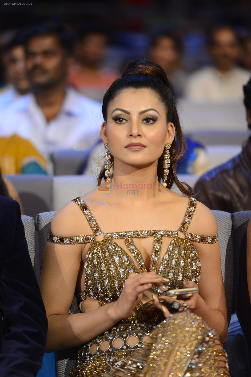 Urvashi Rautela  at SIIMA 2016 DAY 1 red carpet on 30th June 2016
