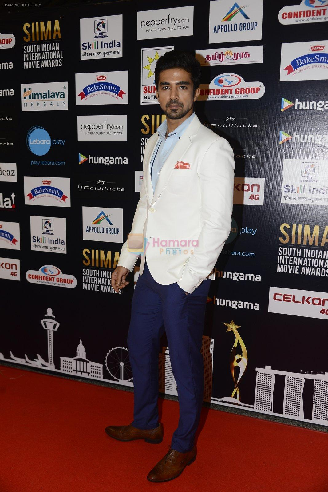 Saqib Saleem at SIIMA 2016 DAY 1 red carpet on 30th June 2016