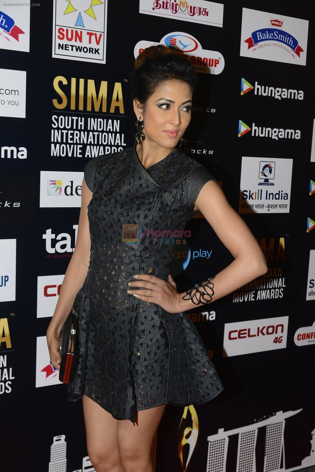 at SIIMA 2016 DAY 1 red carpet on 30th June 2016
