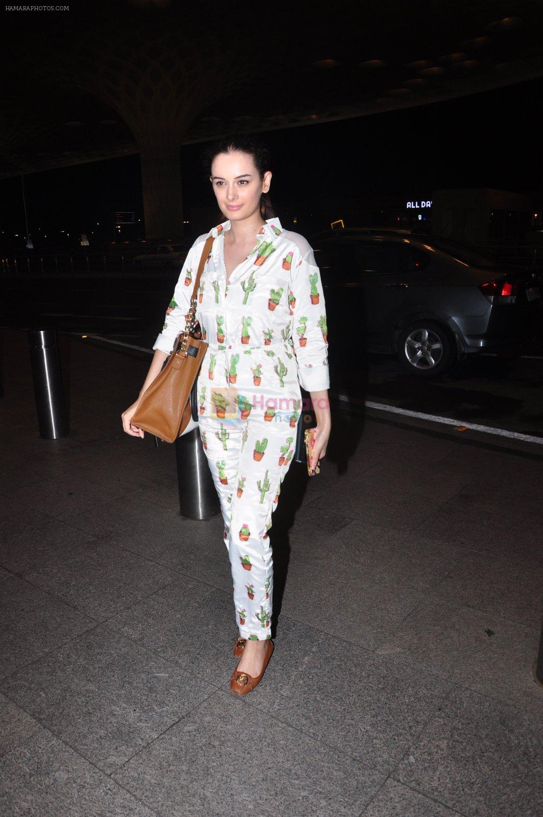 Evelyn Sharma snapped at airport on 1st Aug 2016