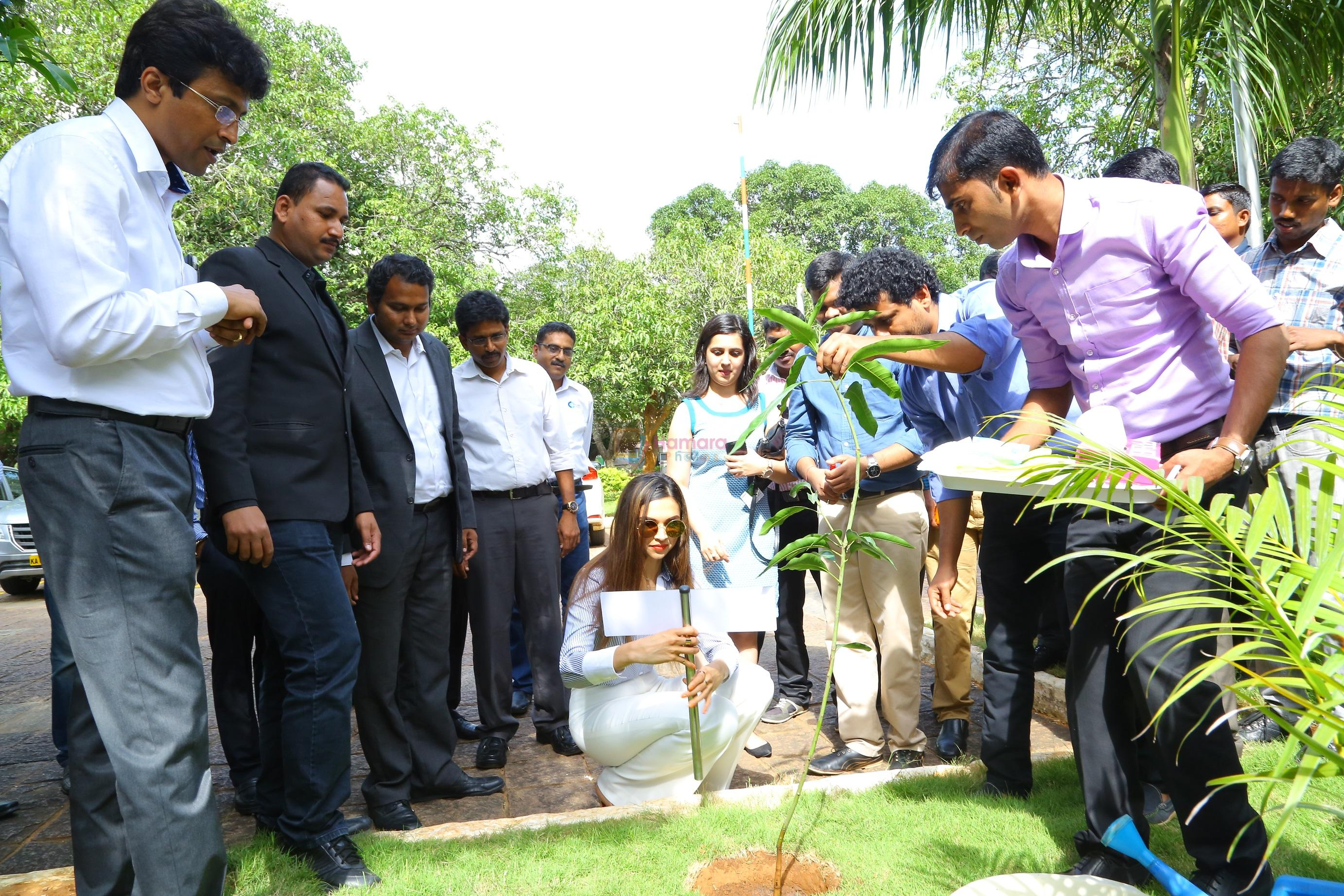Deepika Padukone, brand ambassador of India�s no.1 sugar free chewing gum Orbit plants a mango tree sapling at the Wrigley India factory, the �Home of Orbit� in Bangalore on August 5, 2016