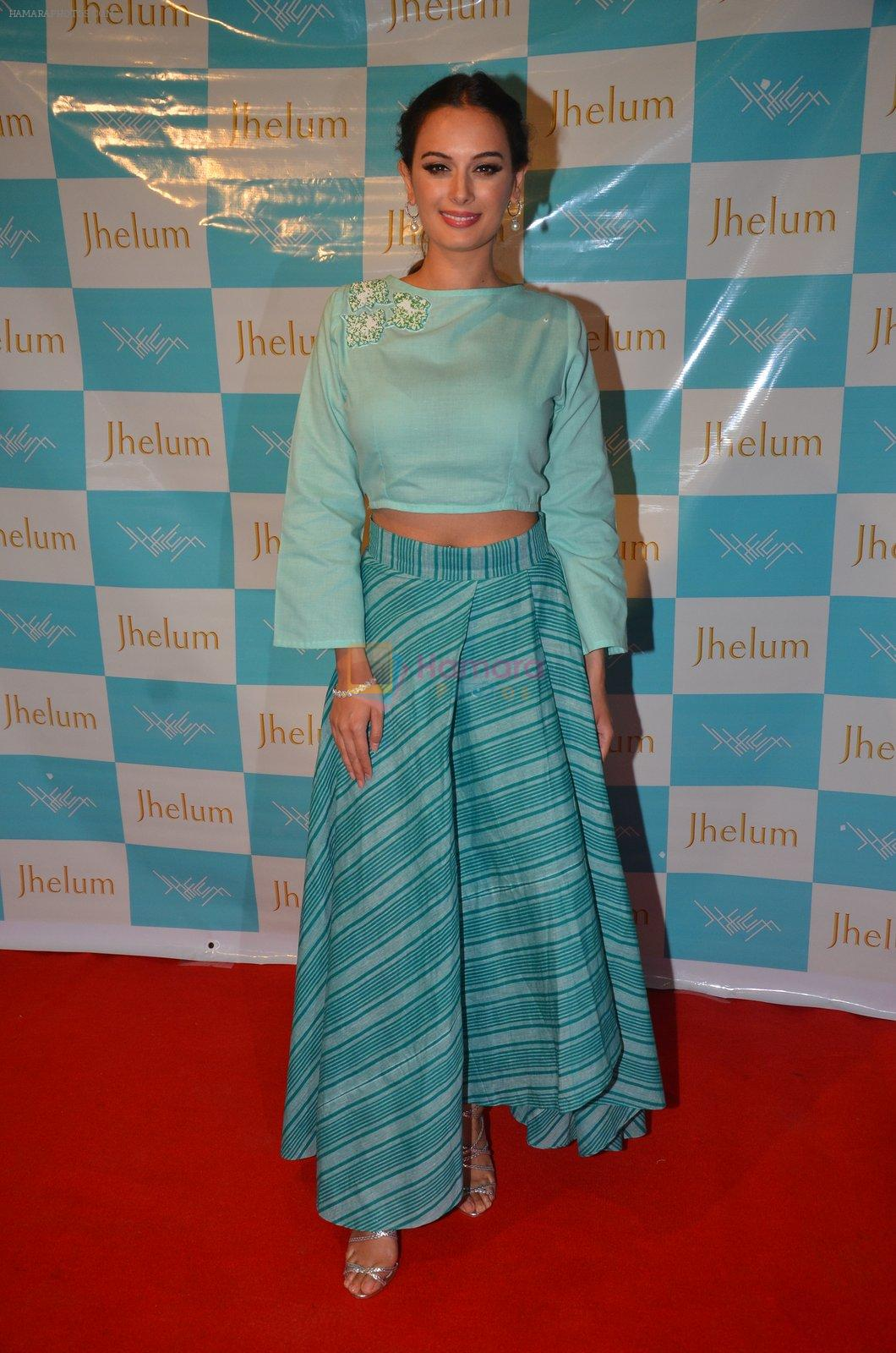Evelyn Sharma at Jhelum store's National Handloom day celebrations on 11th Aug 2016