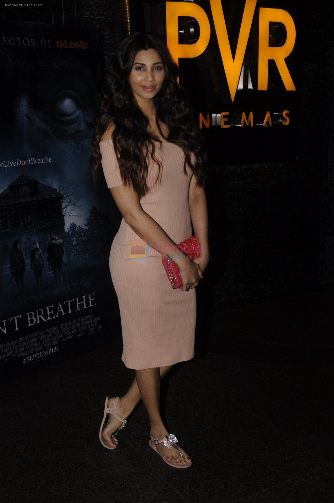 Daisy Shah at Don_t Breathe premiere on 30th Aug 2016
