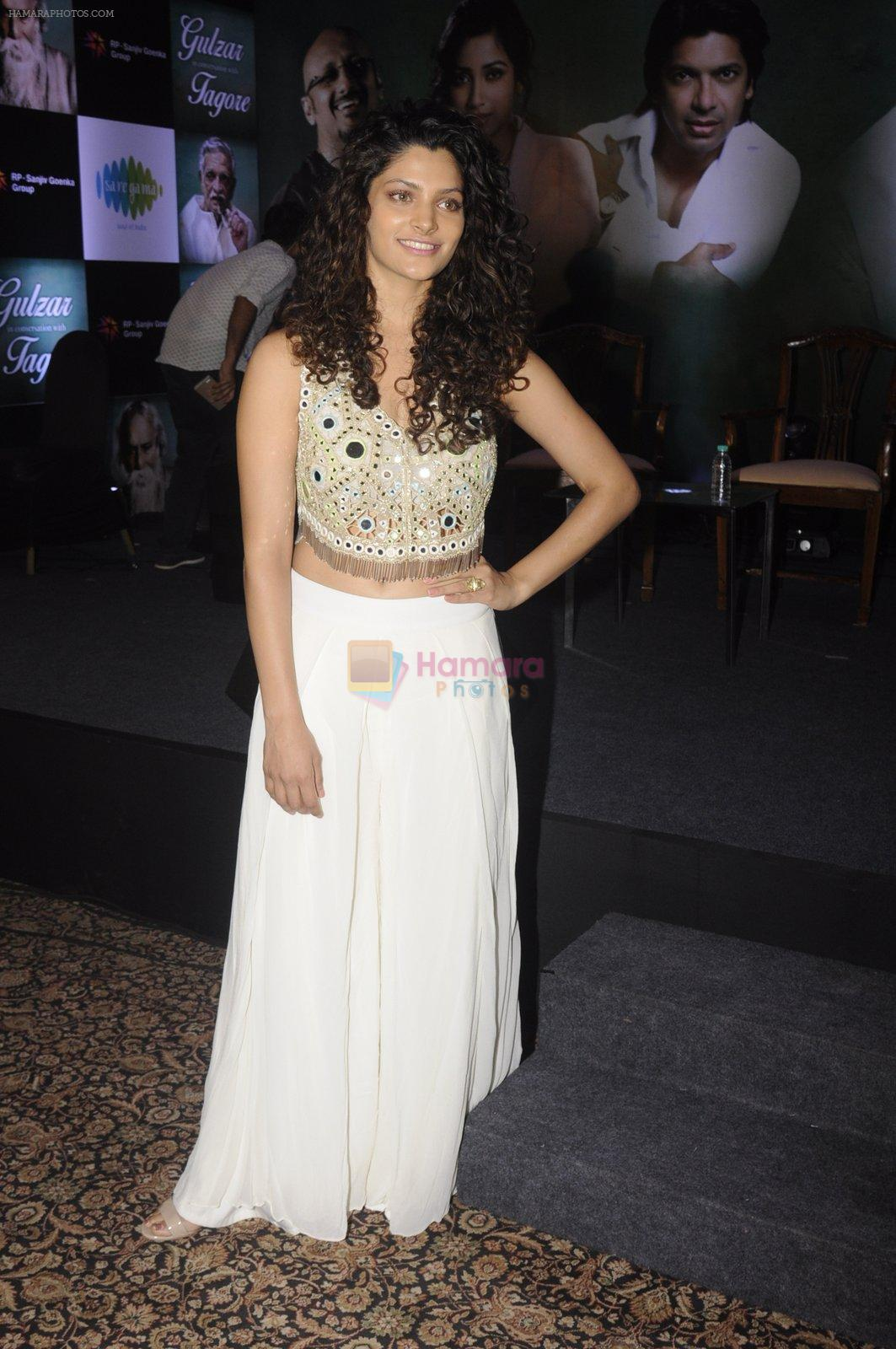Saiyami Kher at Gulzar album launch on 18th Oct 2016