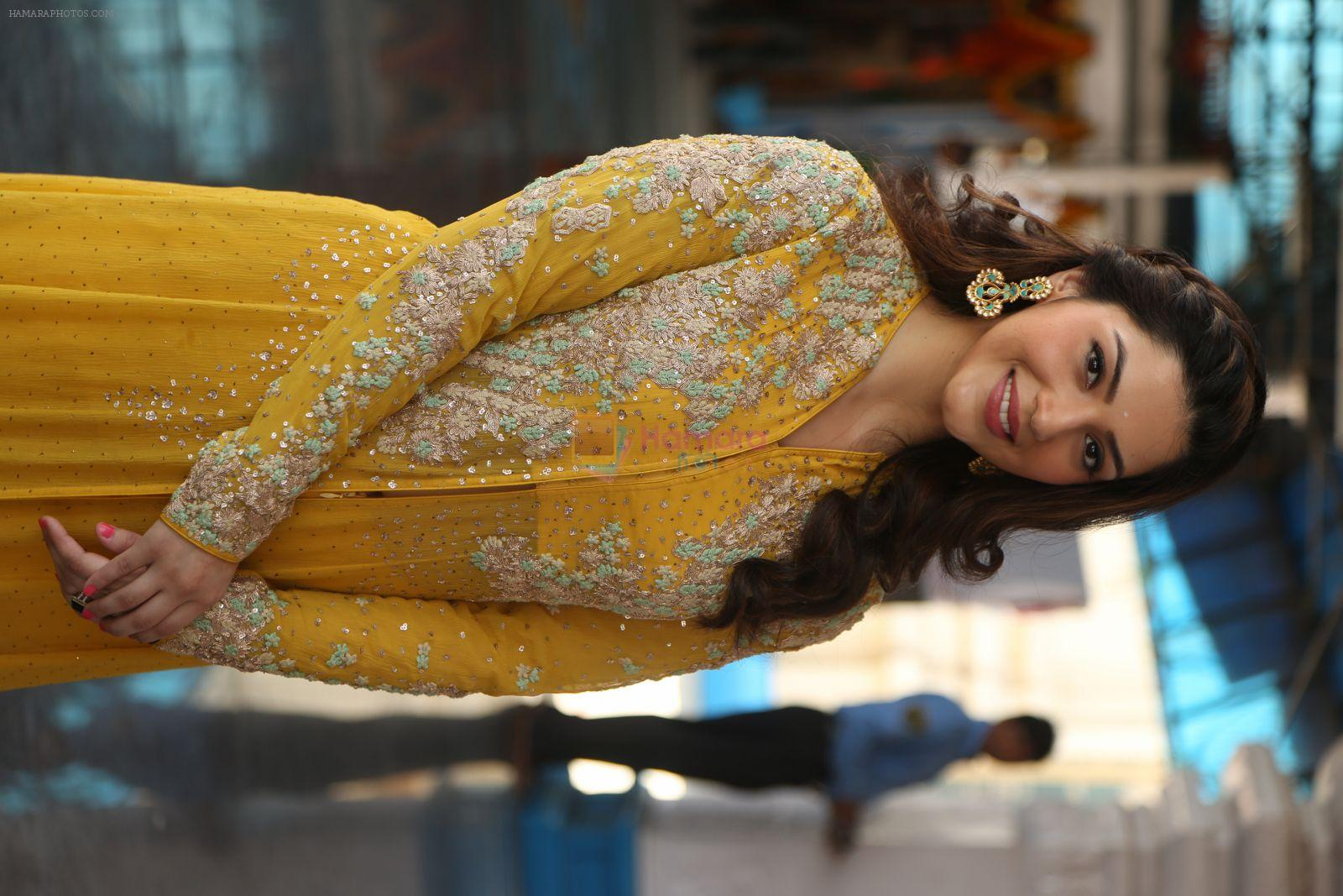 Mehreen kaur Pirzada photo shoot on 11th Nov 2016
