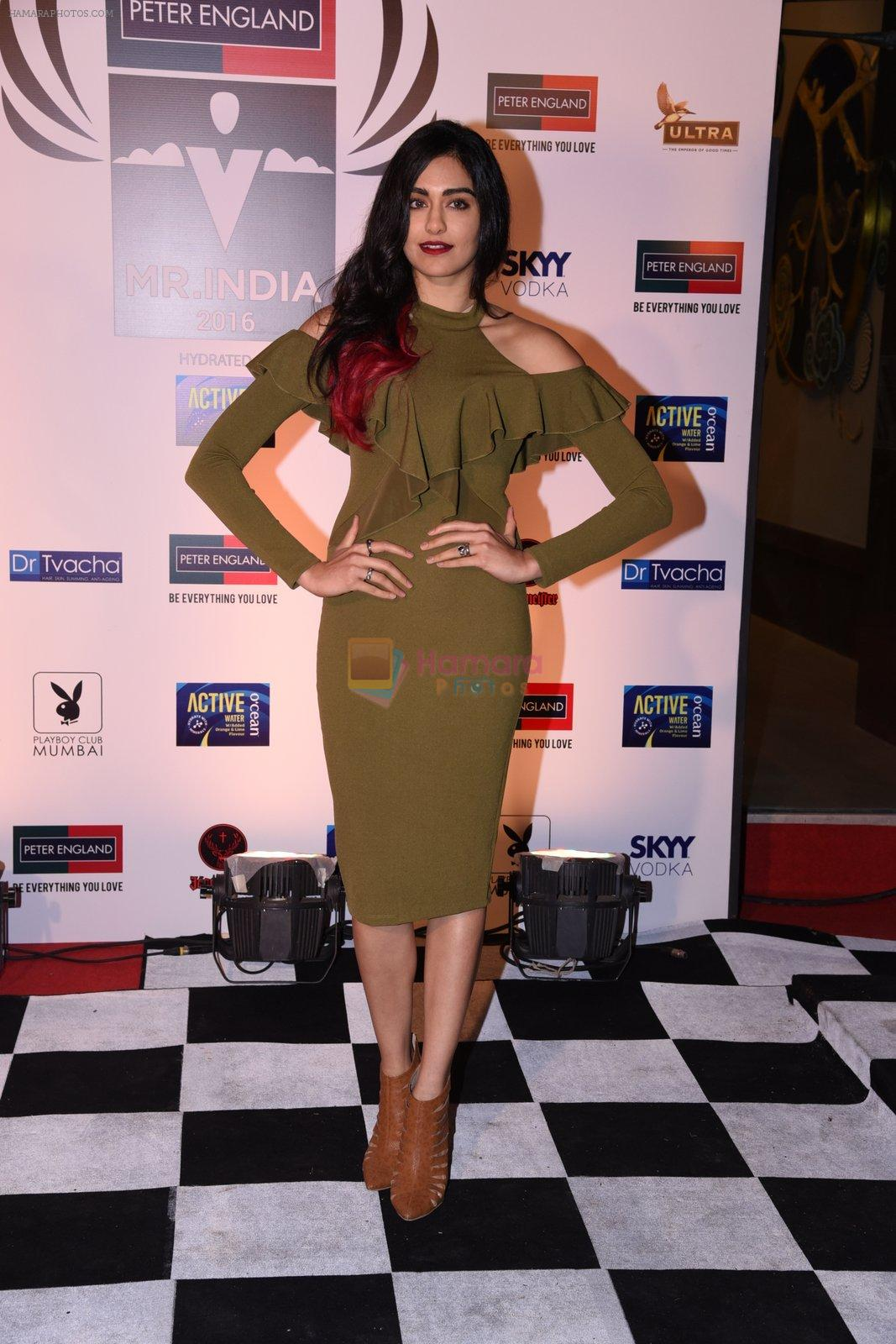 Adah Sharma at Peter England Mr India on 24th Nov 2016