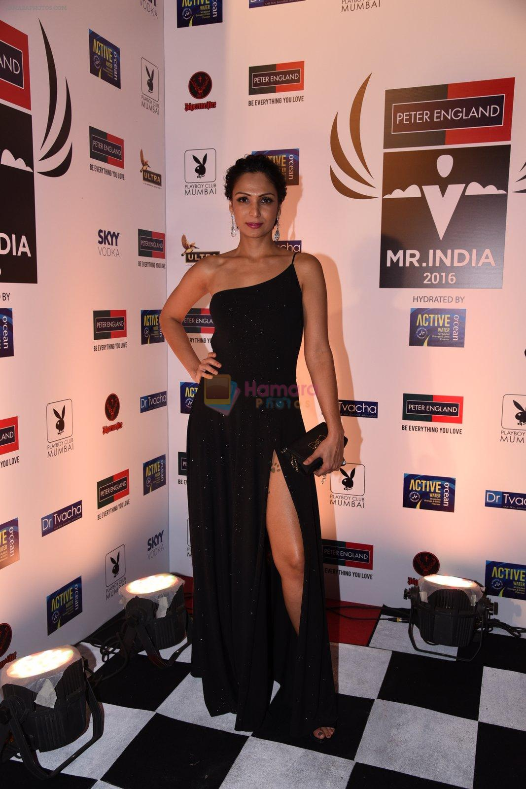 Shamita Singha at Peter England Mr India on 24th Nov 2016