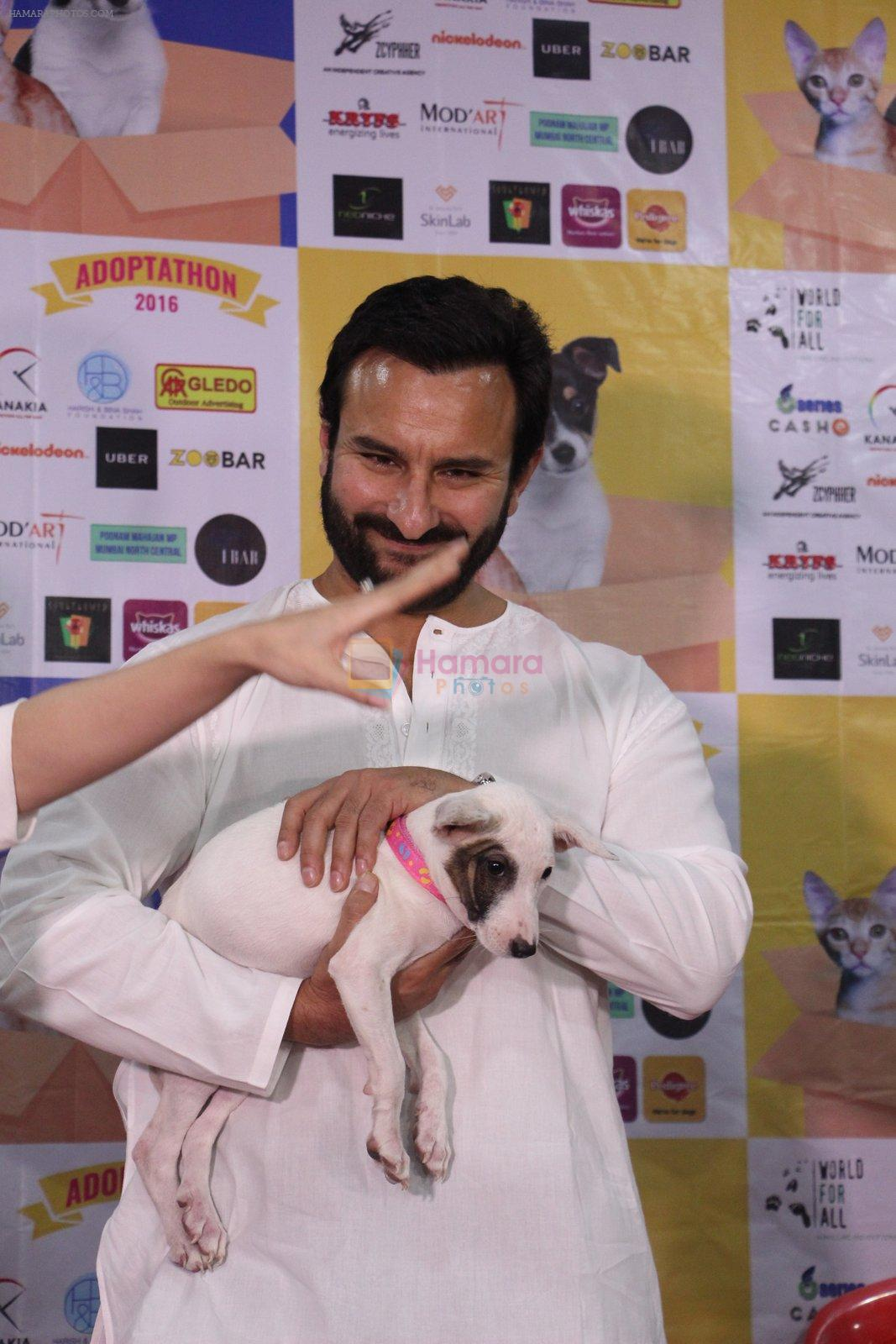 Saif Ali Khan at Pet adoptation on 26th Nov 2016