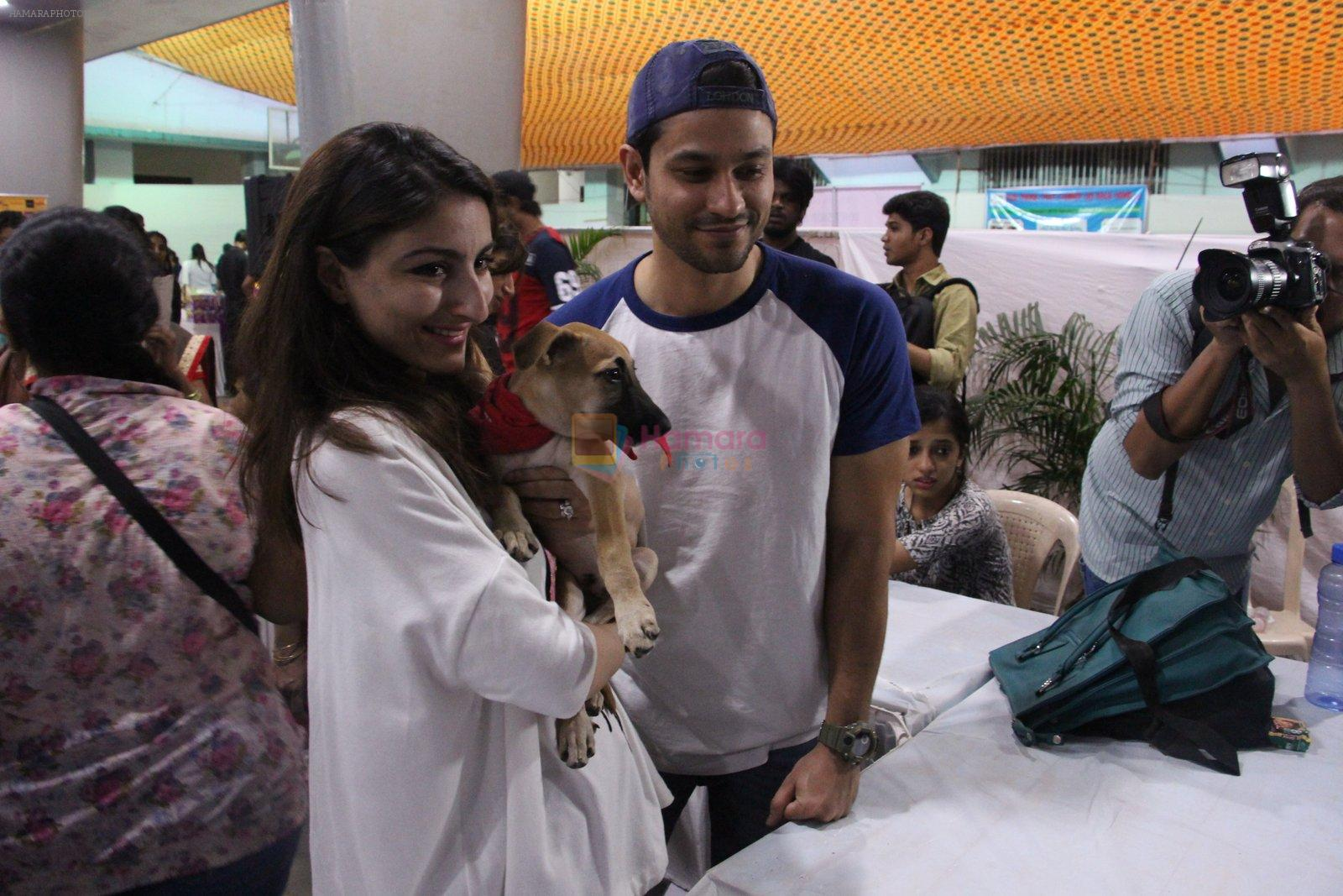 Soha Ali Khan, Kunal Khemu at Pet adoptation on 26th Nov 2016