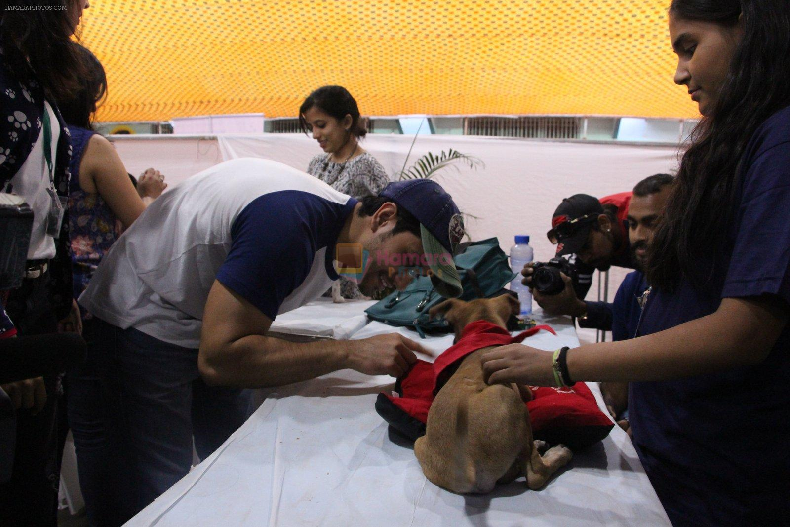 Kunal Khemu at Pet adoptation on 26th Nov 2016