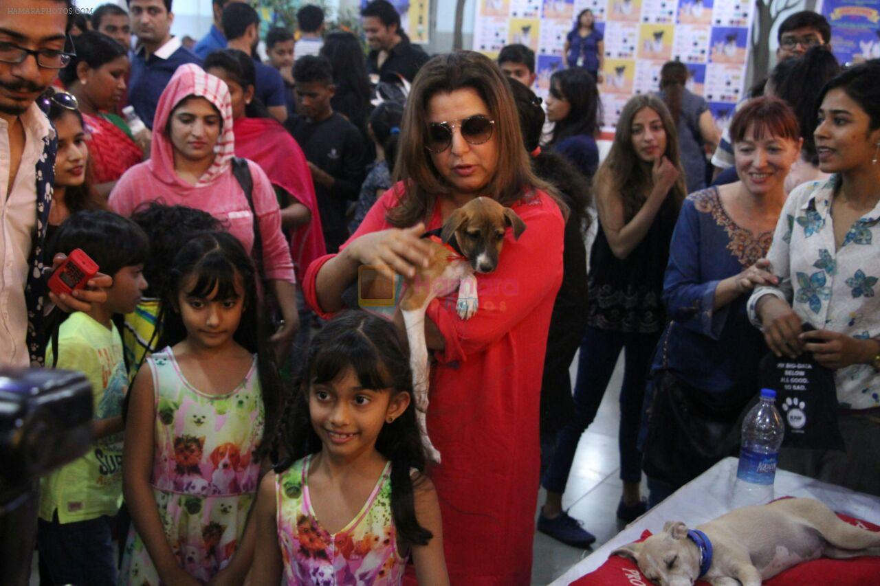 Farah Khan at pet adoption in Mumbai on 27th Nov 2016