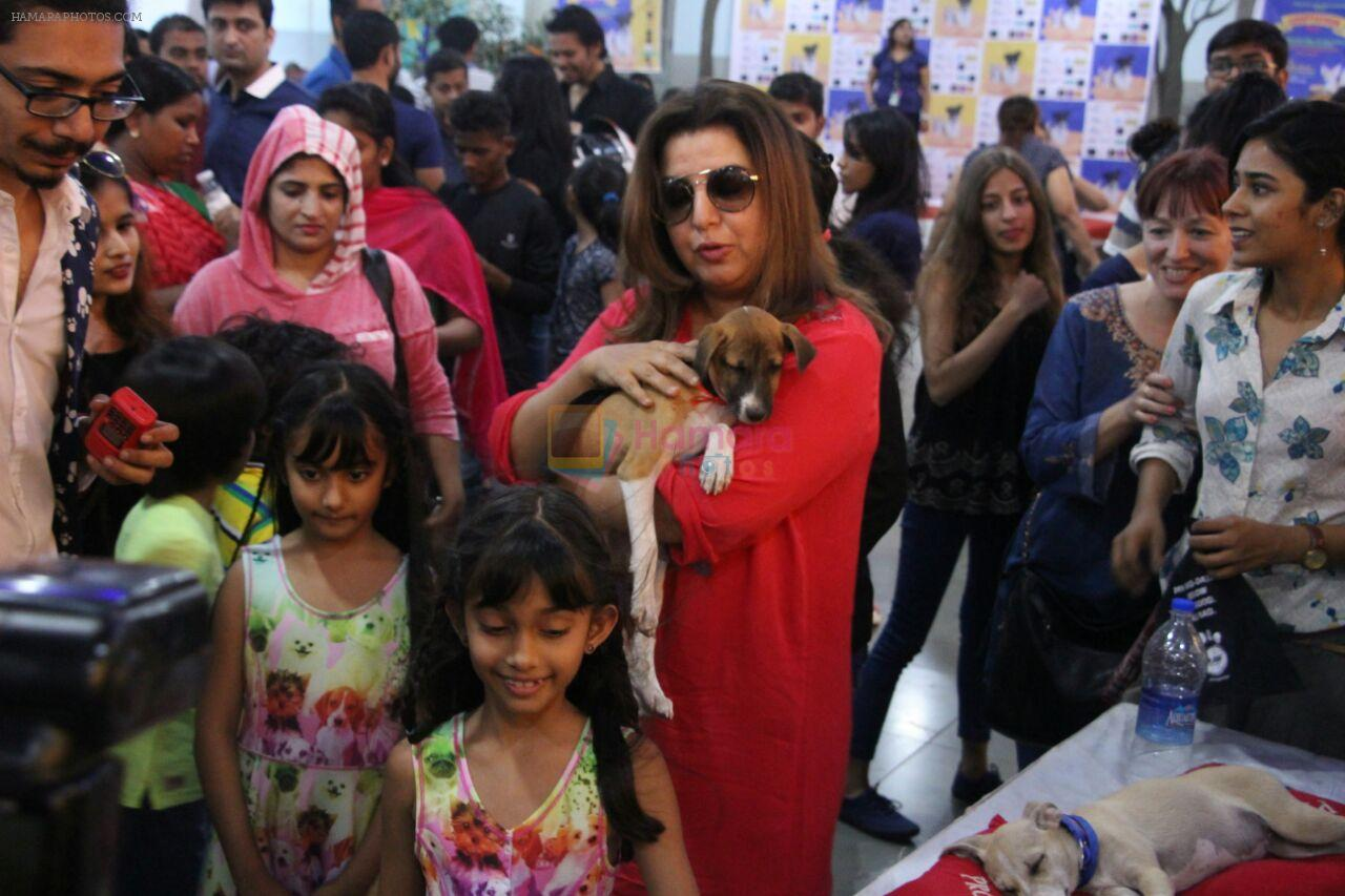 Farah Khan at pet adoption in Mumbai on 27th Nov 2016