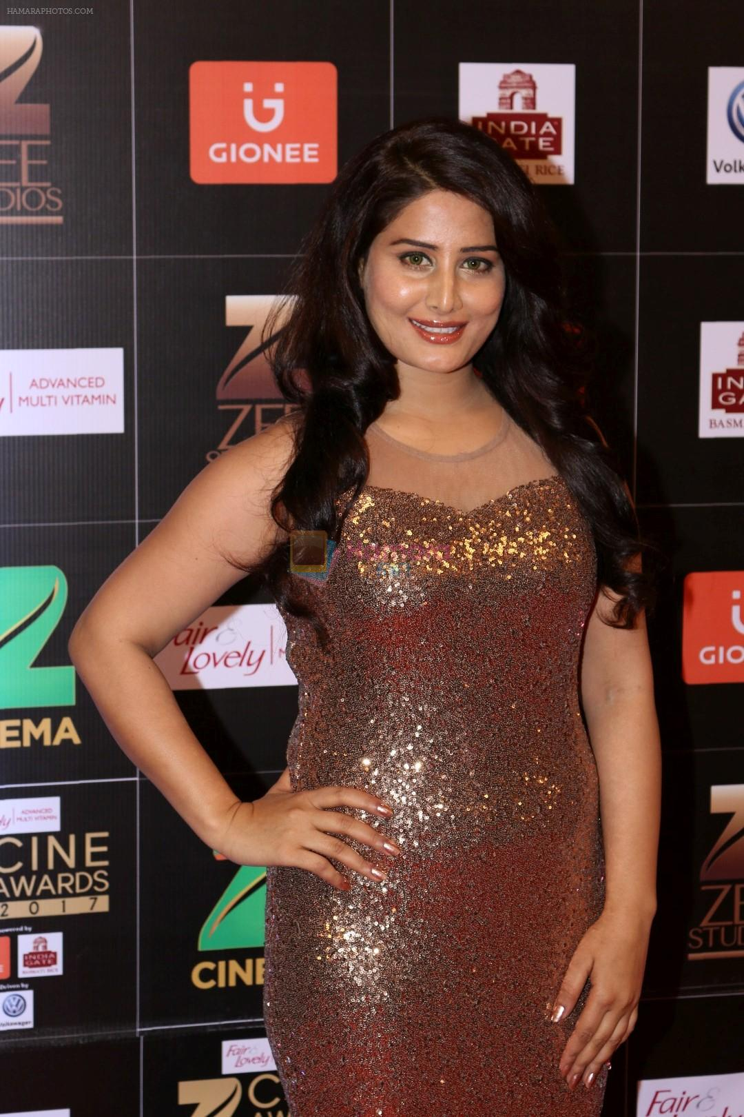 at Red Carpet Of Zee Cine Awards 2017 on 12th March 2017