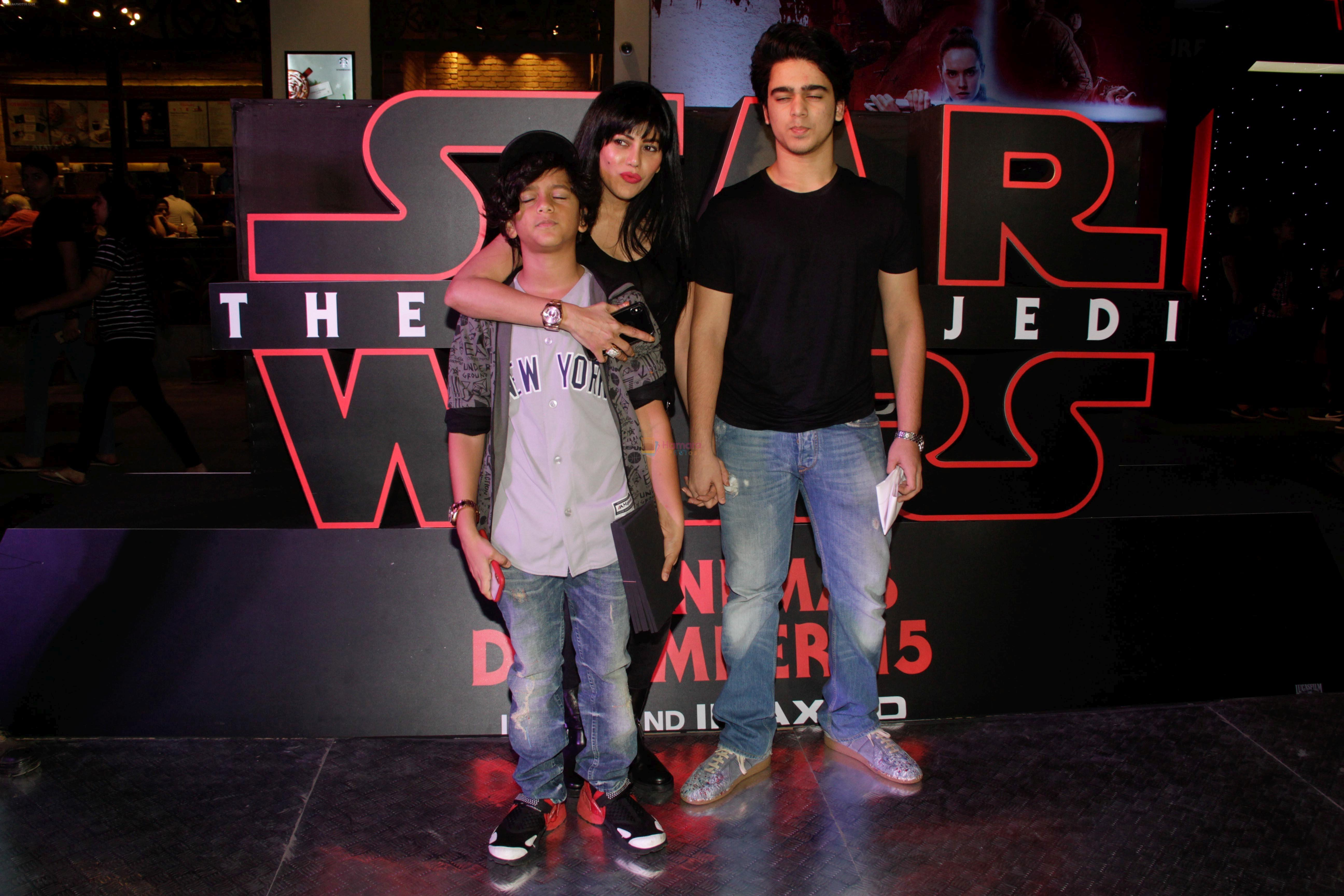 at the Red Carpet Premiere Of 2017's Most Awaited Hollywood Film Disney Star War on 13th Dec 2017