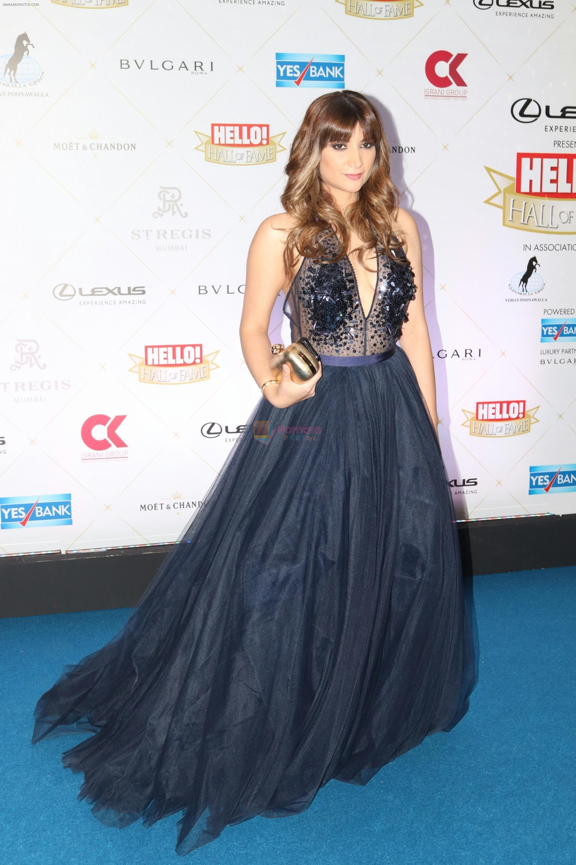 Michelle Poonawalla at Hello Hall of Fame Awards in st regis in mumbai on 12th March 2018