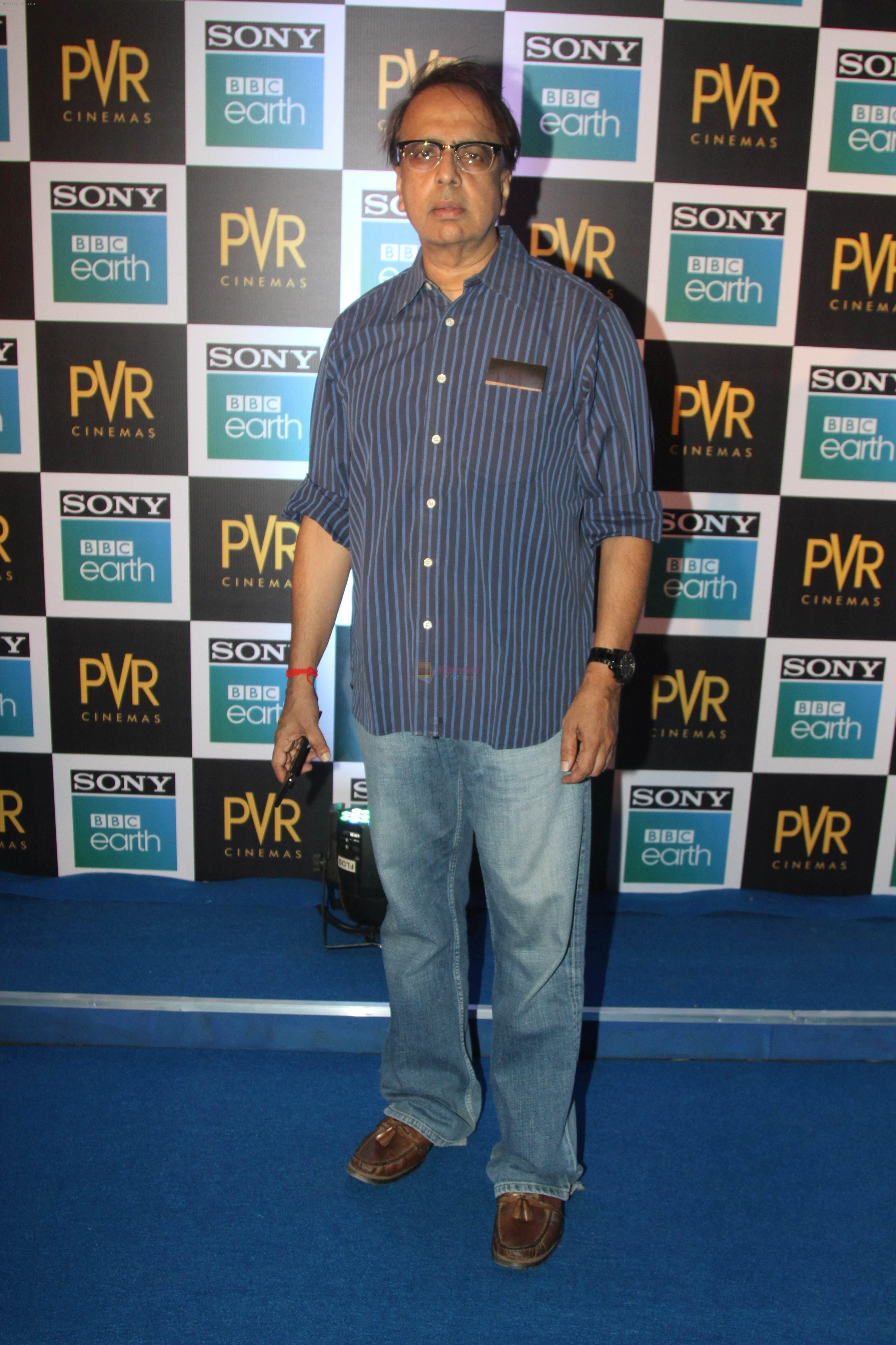 Anant Mahadevan at the Screening of Sony BBC Earth's film Blue Planet 2 at pvr icon in andheri on 15th May 2018