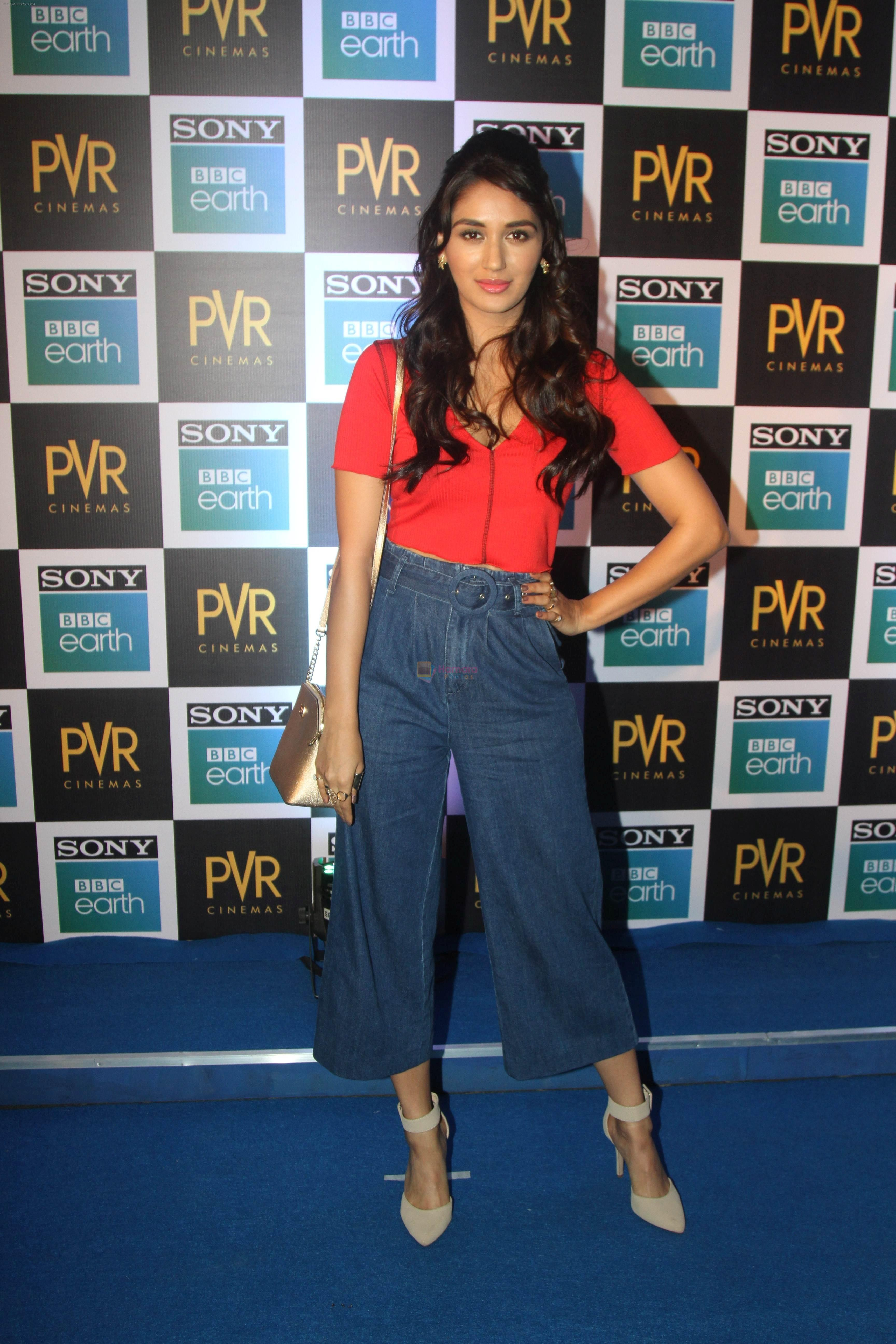 at the Screening of Sony BBC Earth's film Blue Planet 2 at pvr icon in andheri on 15th May 2018