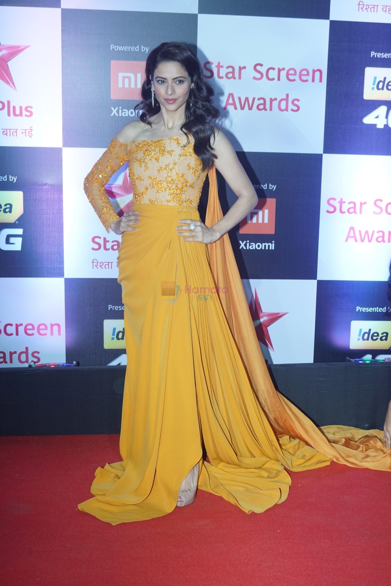 Aamna Shariff at Red Carpet of Star Screen Awards 2018 on 16th Dec 2018