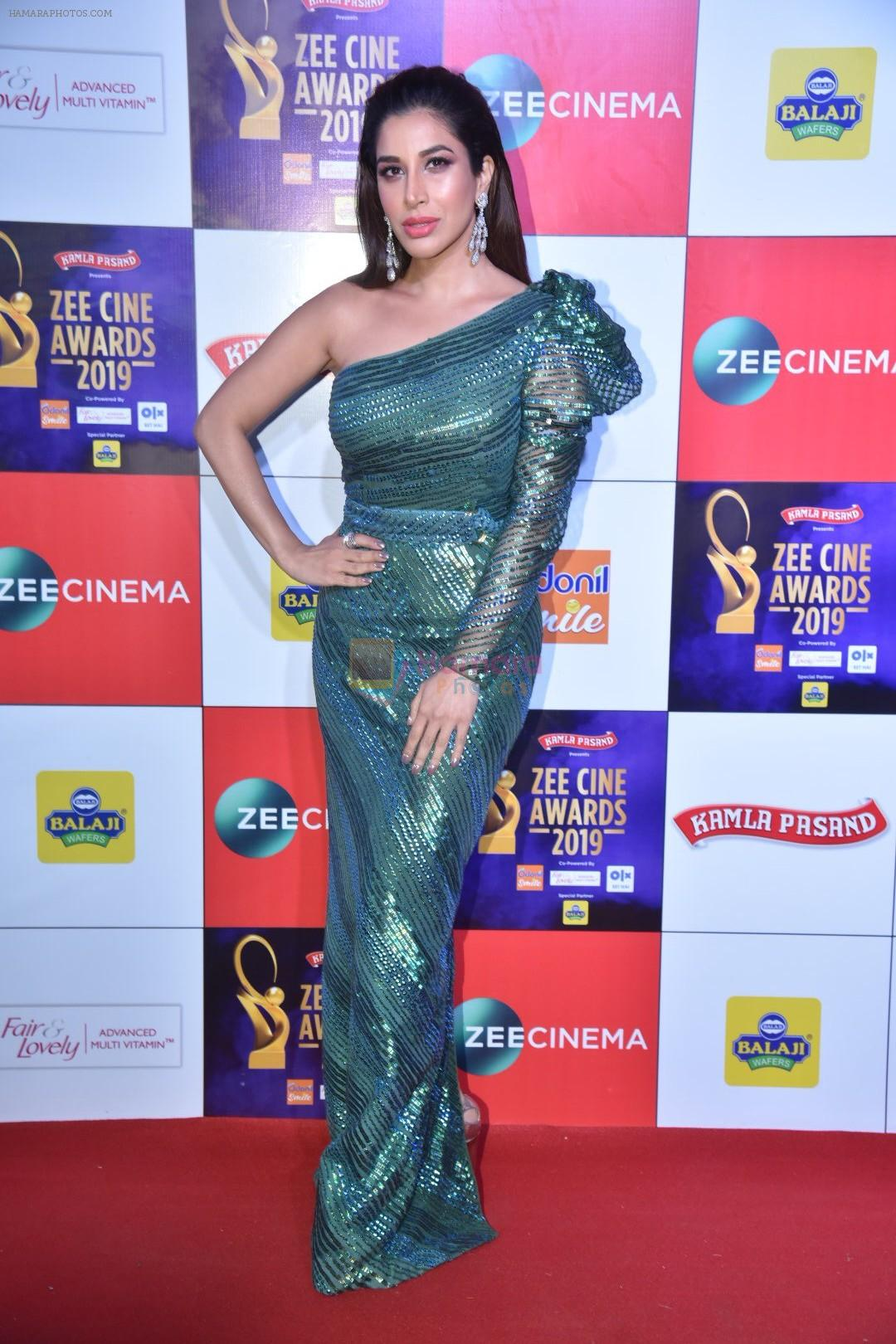 Sophie Chaudhary at Zee cine awards red carpet on 19th March 2019