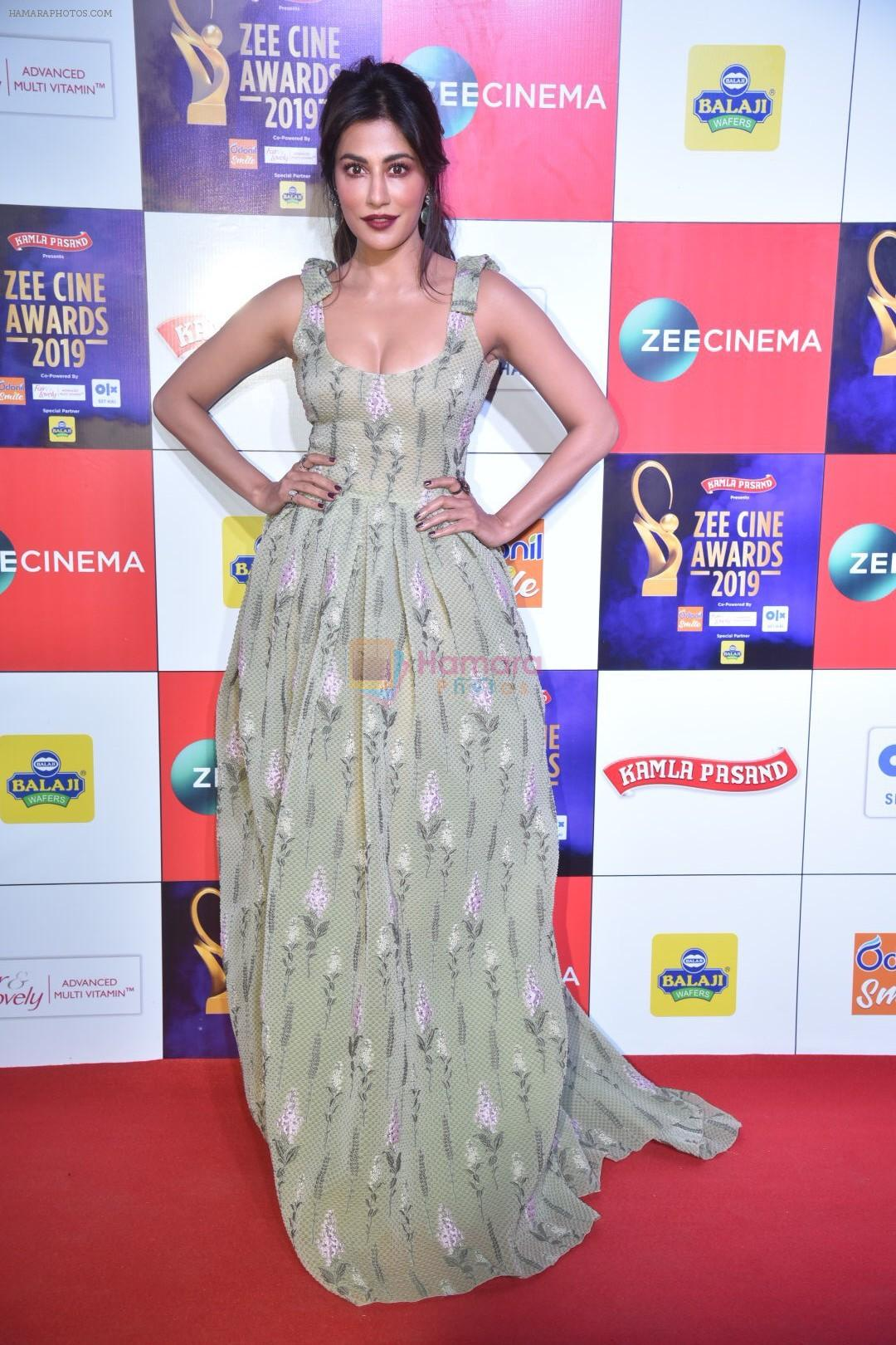 Chitrangada Singh at Zee cine awards red carpet on 19th March 2019
